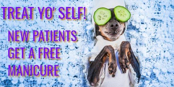 Funny dog at spa