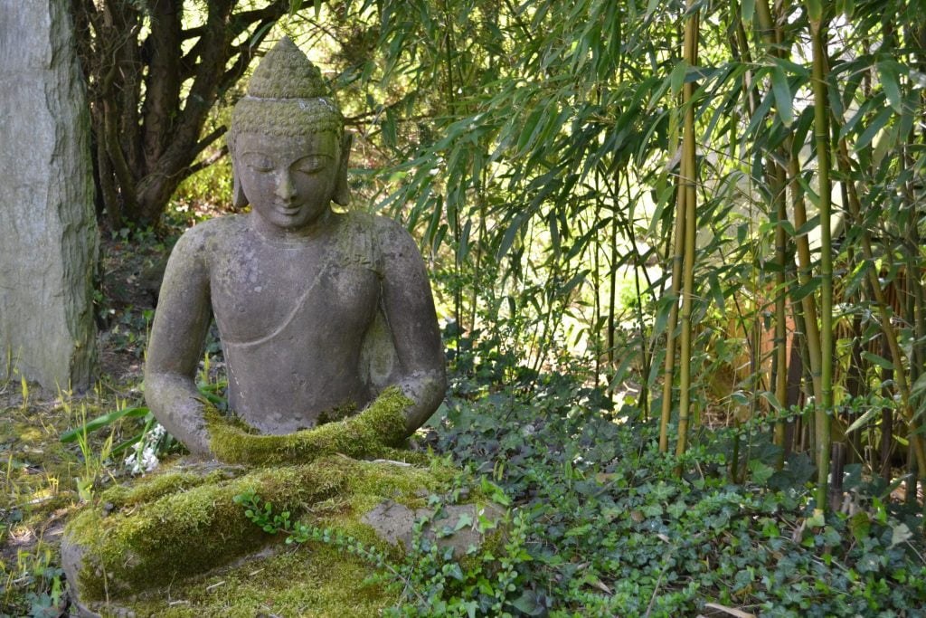 Zen Buddha